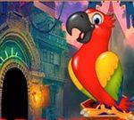Avm Funny Parrot Escape
