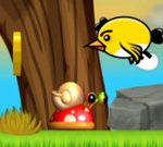 Bird Eggs Rescue